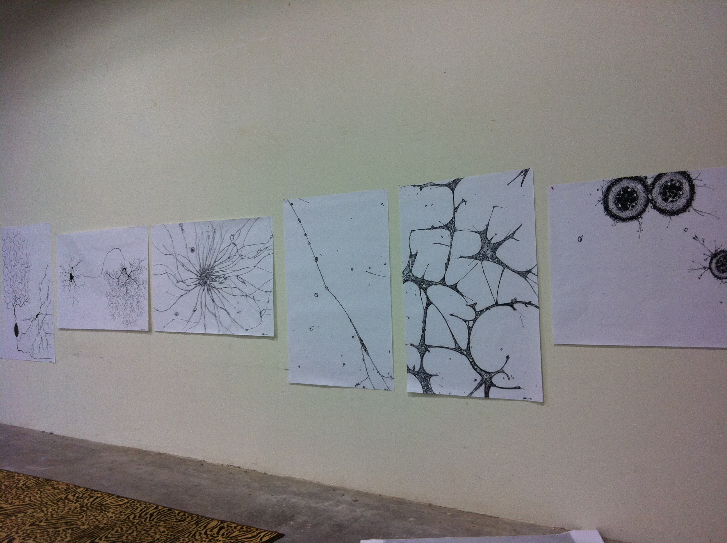 Preliminary sketches in my studio