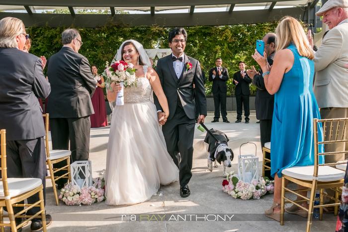 Jackson _ Subhash Wedding (520 of 1055).jpg
