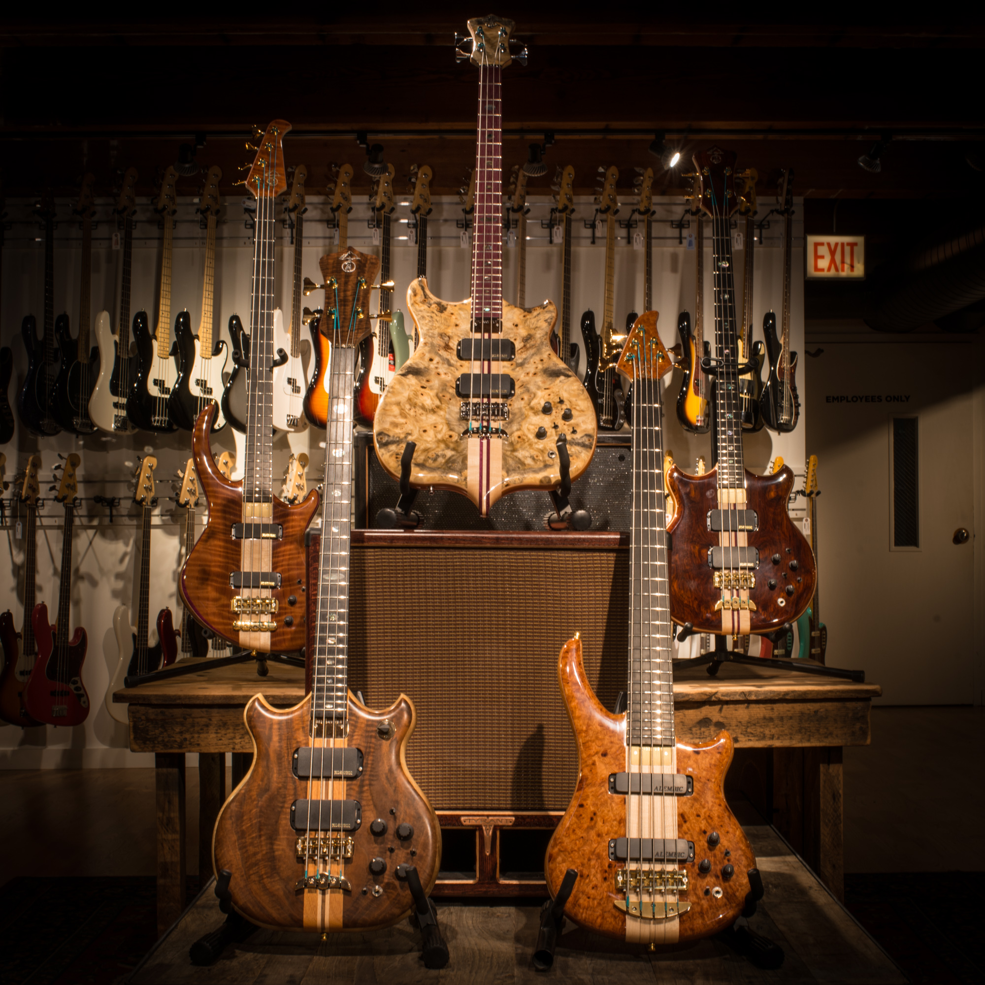Alembic   Chicago Music Exchange