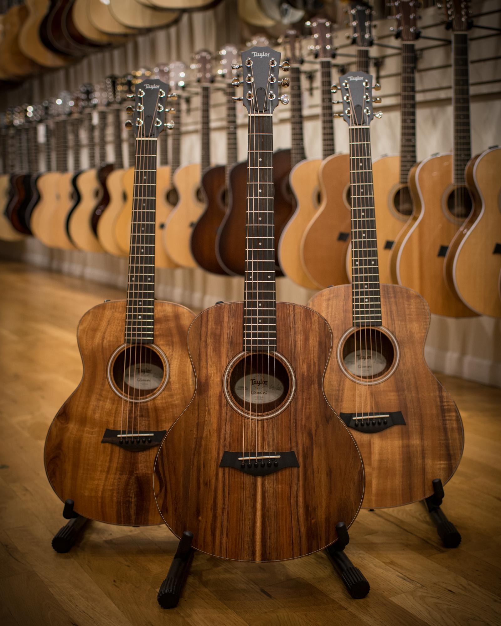 Taylor Guitars   Chicago Music Exchange