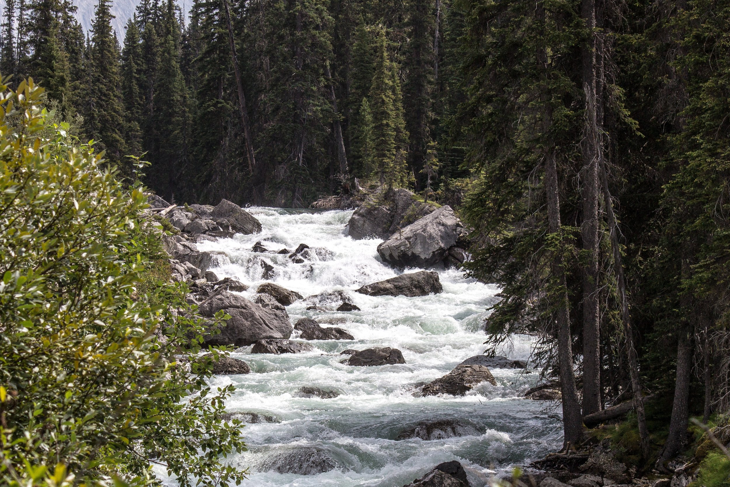 maligne-river-jasper-alberta-canada-161699.jpeg