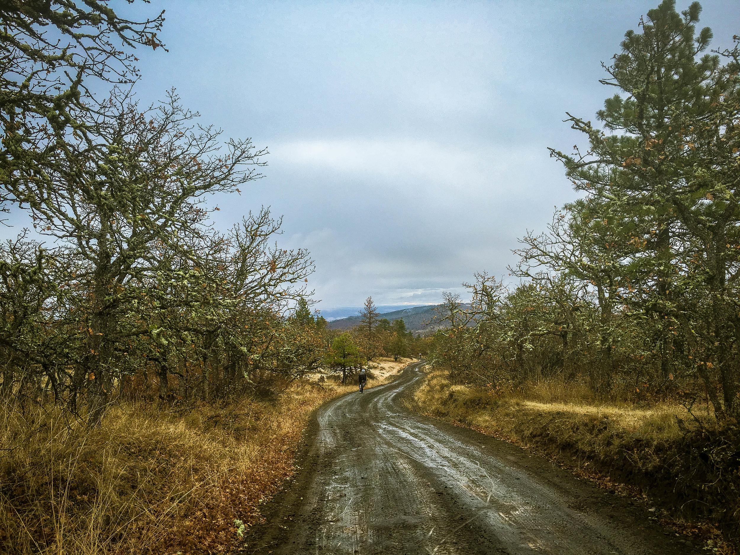 Dirty Ketchum Loop: Neal Creek to Mosier -