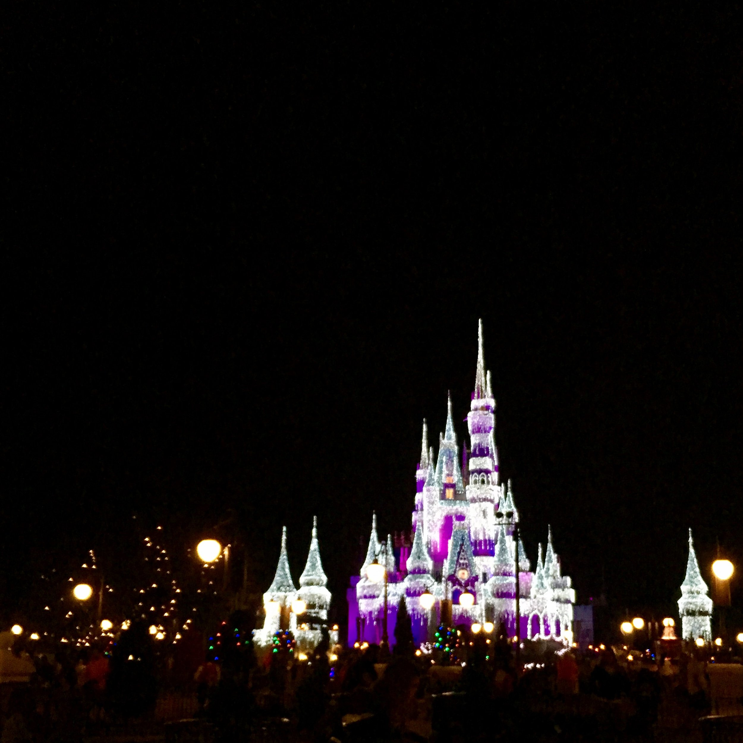 Yes, the Magic Kingdom gives me joy. I got the excited tingles just driving through the parking gate at Disneyworld. Also, how pretty is that castle?