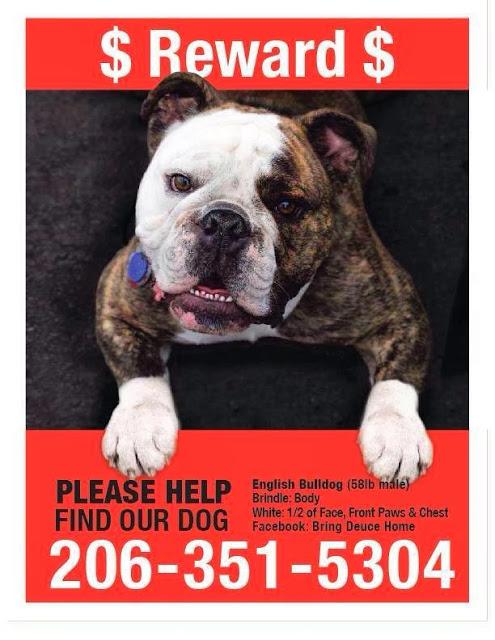 Deuce-Lost+Bulldog-Seattle.jpg