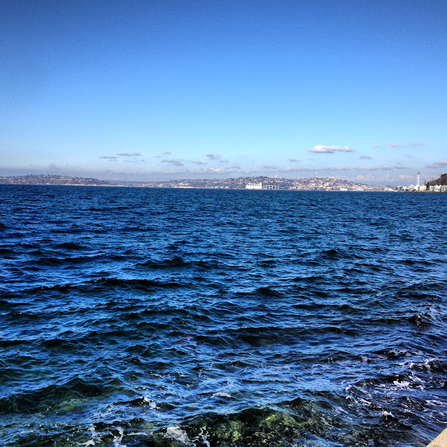 Alki-Beach-Seattle.JPG