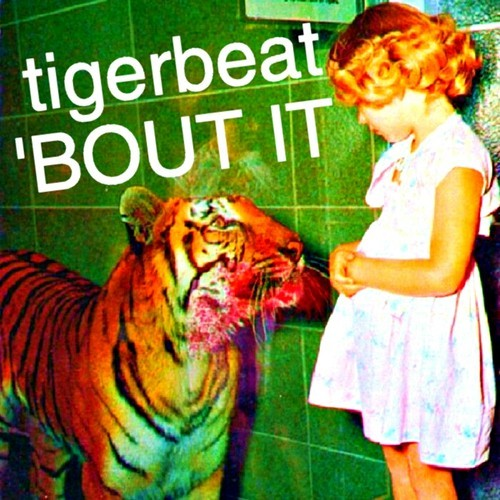 TigerBeat-Bout-It-Mixtape.jpg