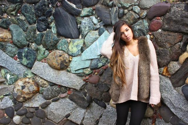Rock+Wall+with+Fur.jpg
