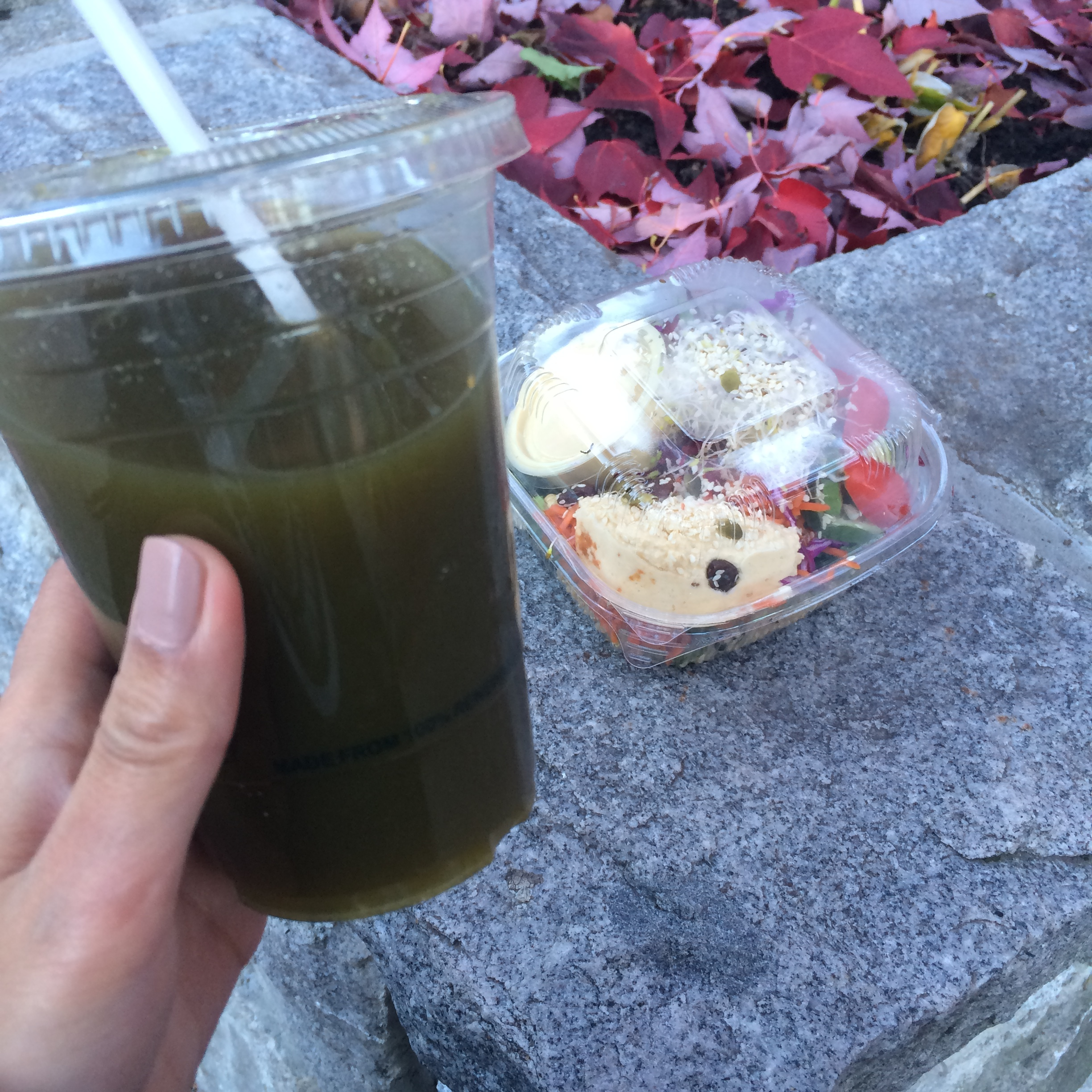 Buddha Bowl & green juice from Green Moustache for the road