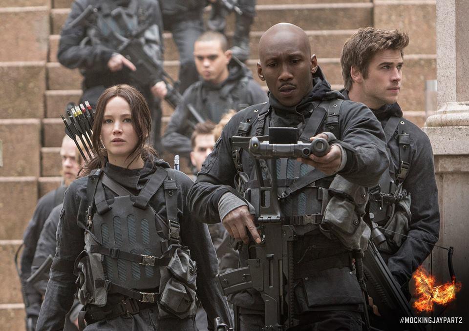 Freebandz. V ia  Hunger Games Facebook