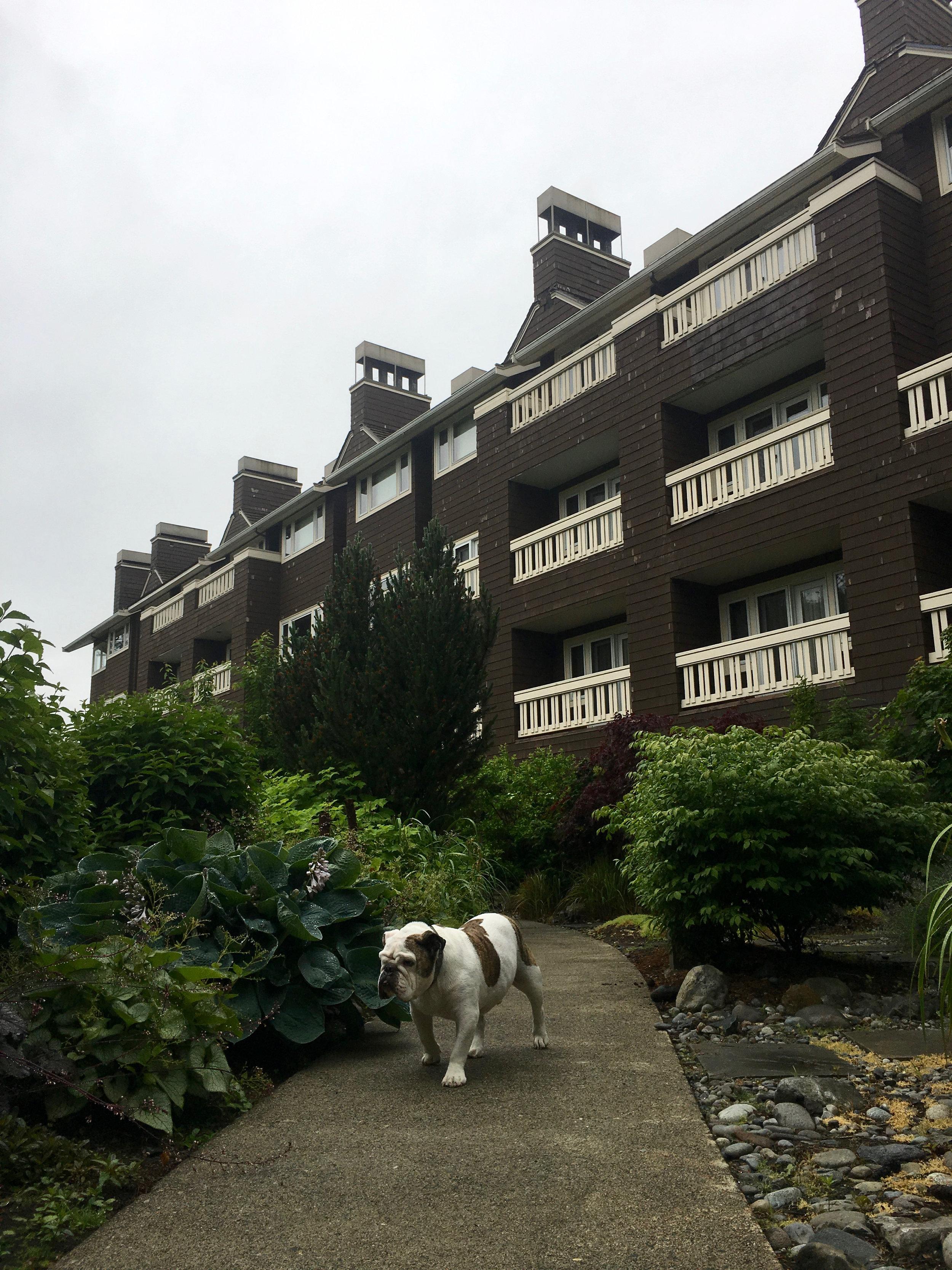Salish Lodge and Spa 9.jpg
