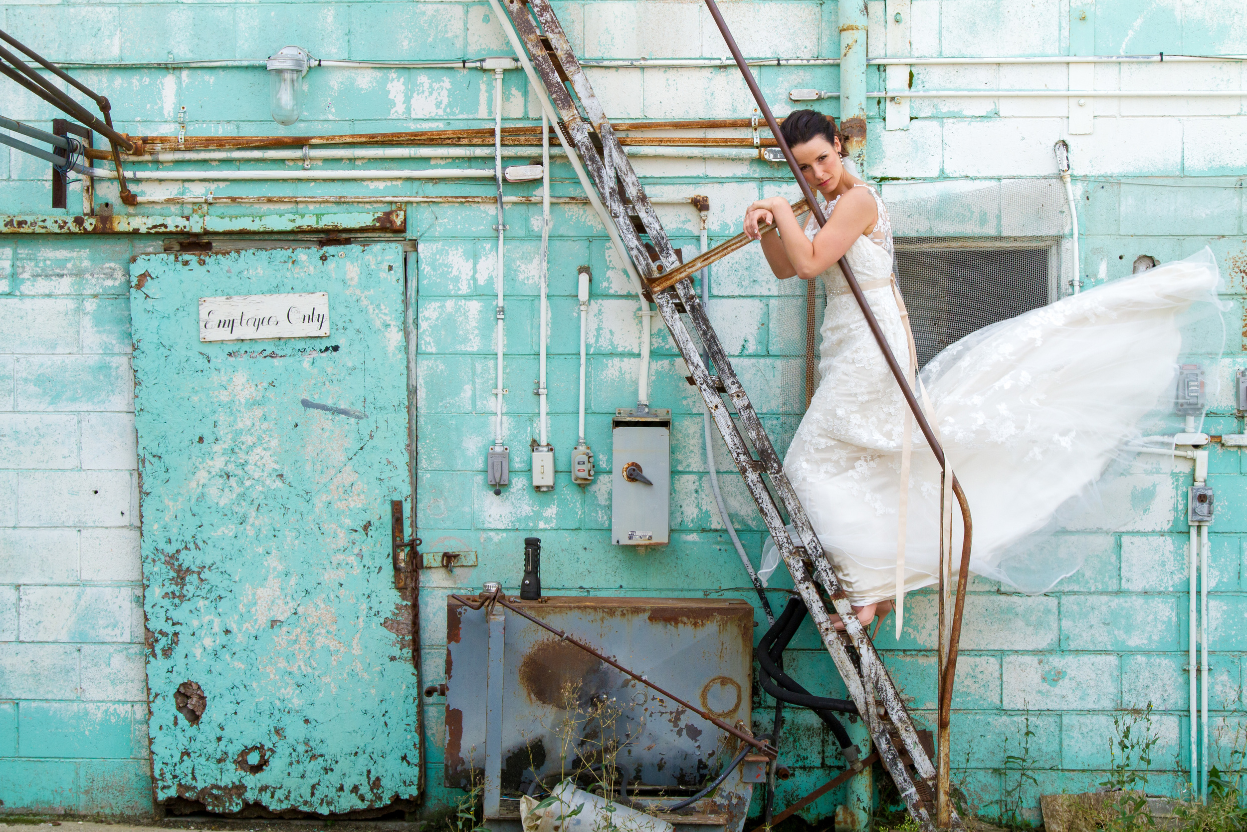 Wedding Link.jpg