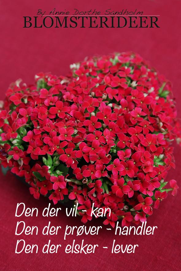 Blomsteridéer.dk, blomster ideer, valentin, annie dorthe sandholm