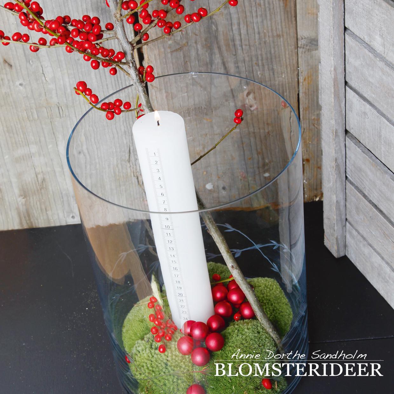 blomsterideer, kalenderdekoration, jul