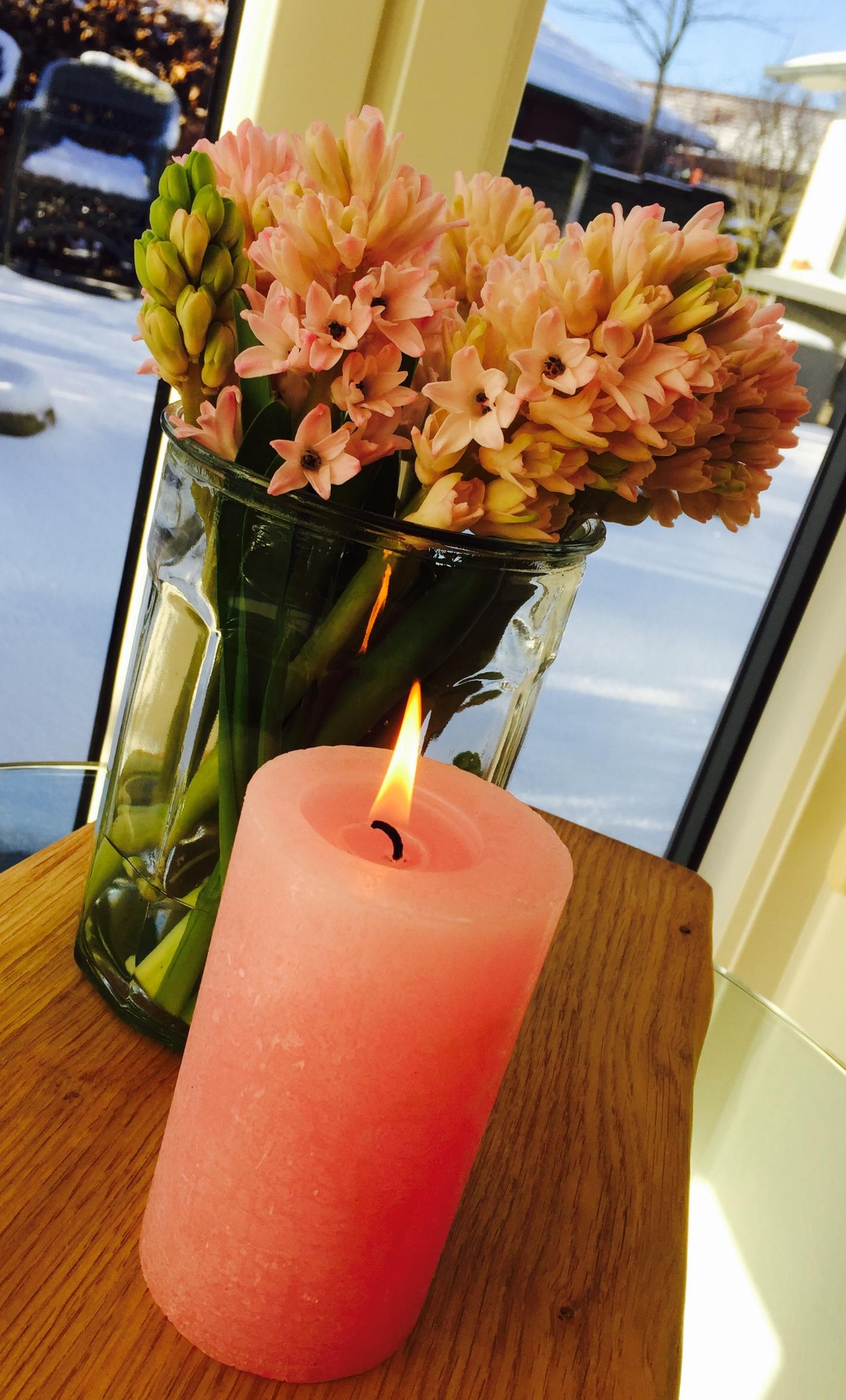 hyacinter, blomster, forårsfornemmelser, blomsterideer,