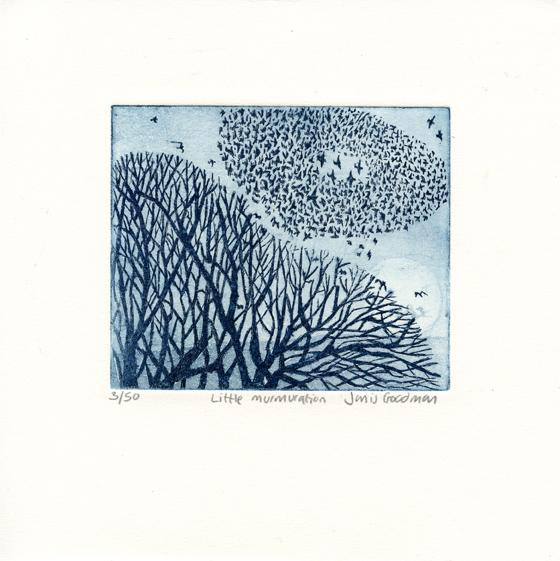 Goodman, Janis: Little Murmuration etching aquatint