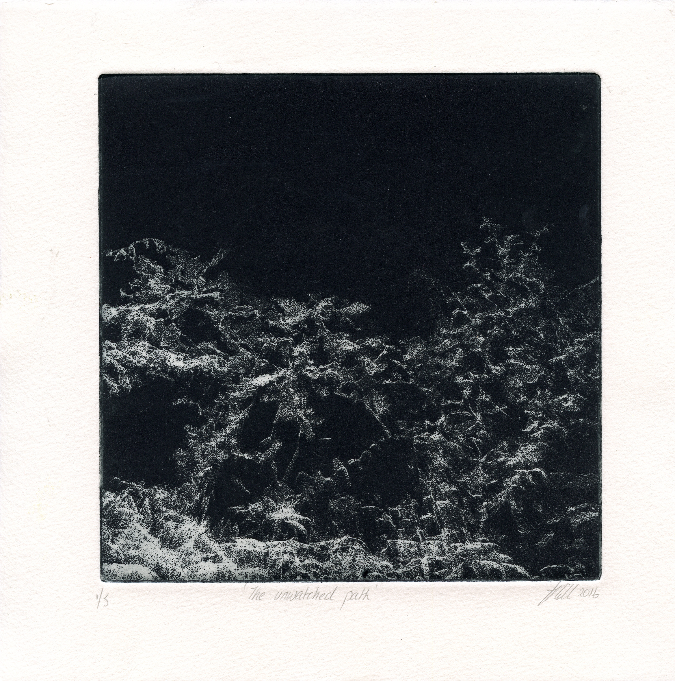 Hill Tracy, The Unwanted Path photo-intaglio