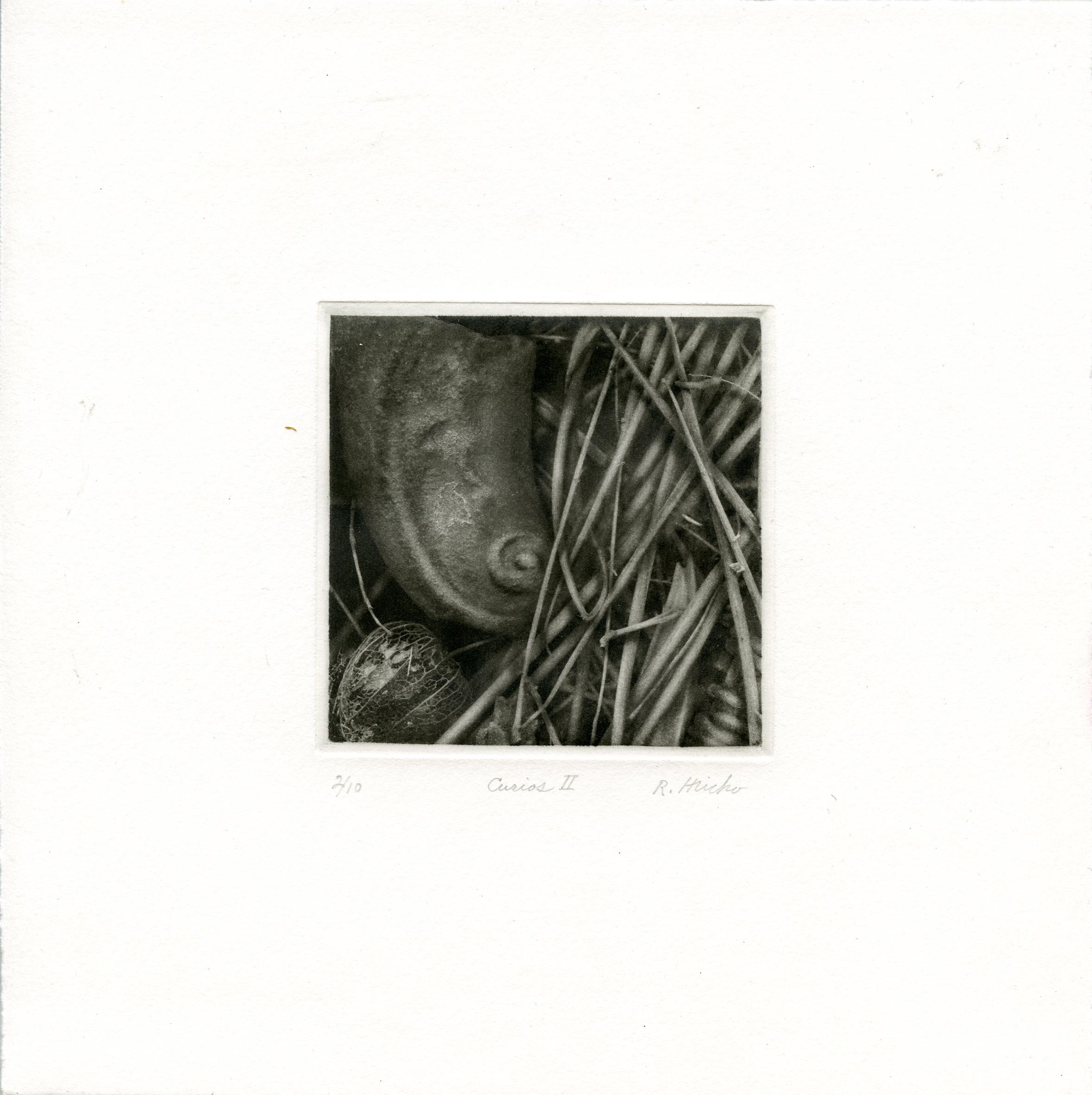 Hricko, Richard: Curios II photogravure