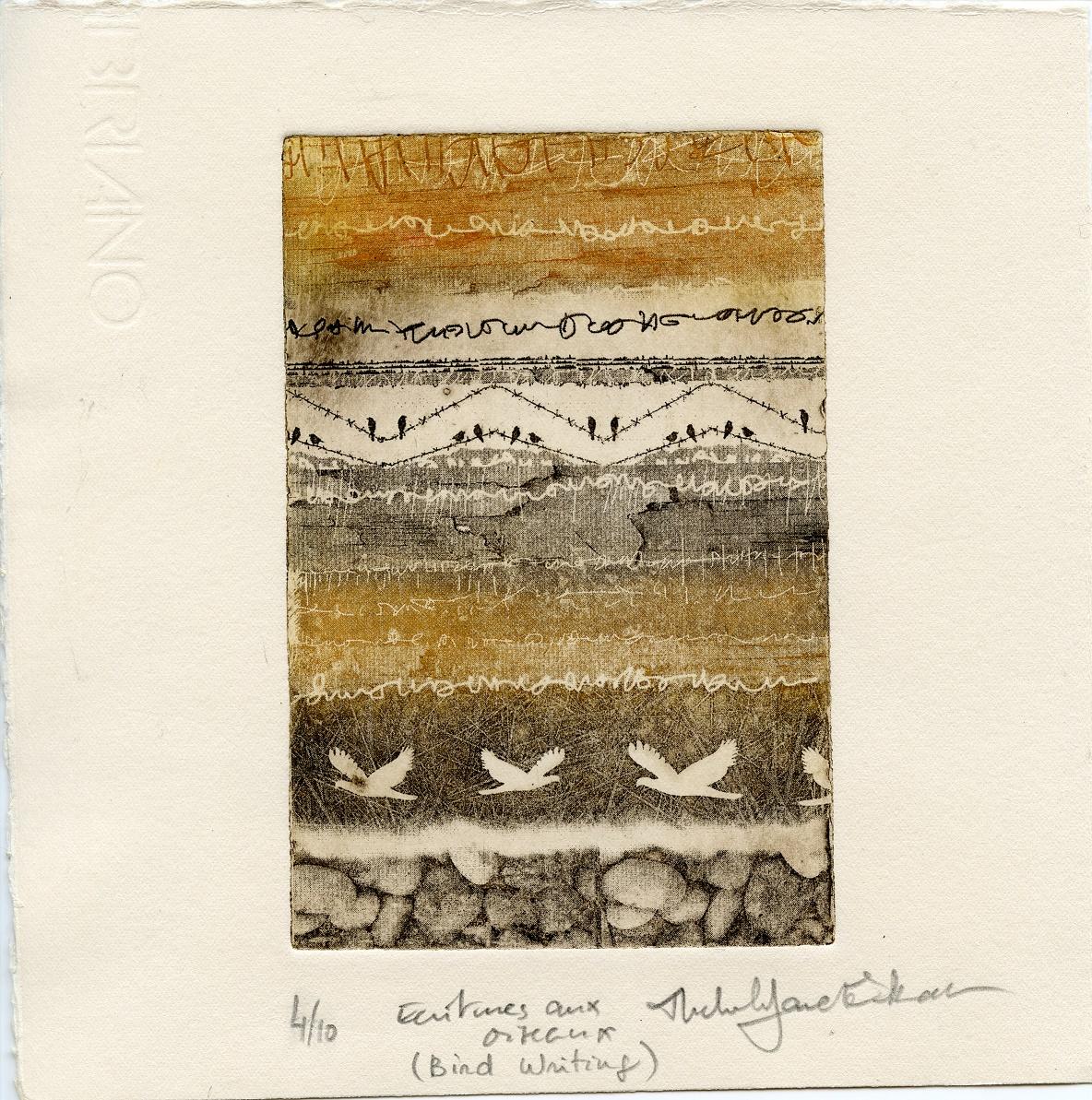James, Michele: Bird Writing intagilio