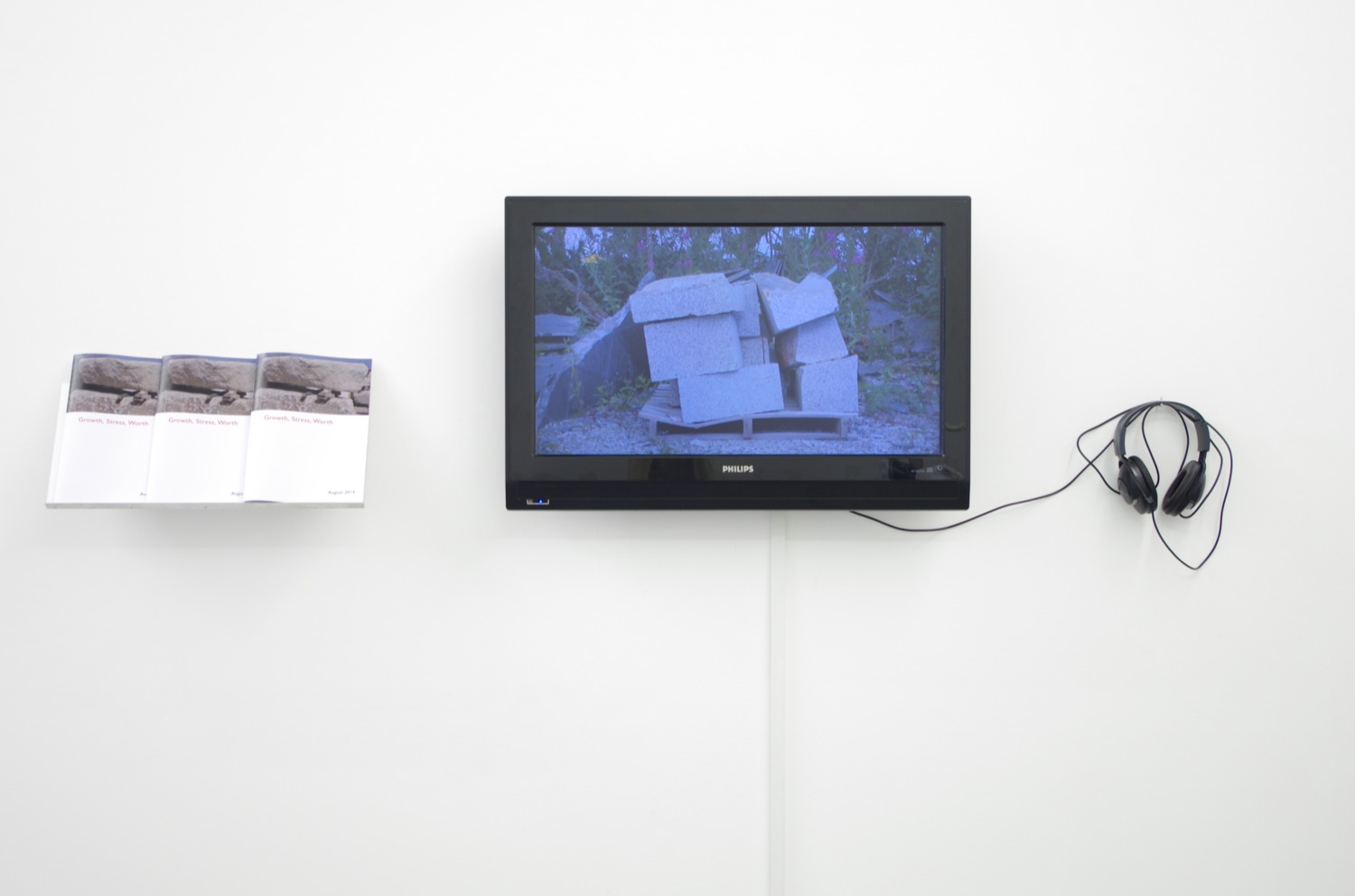 Ross Jardine, installation view at PEER, 2014