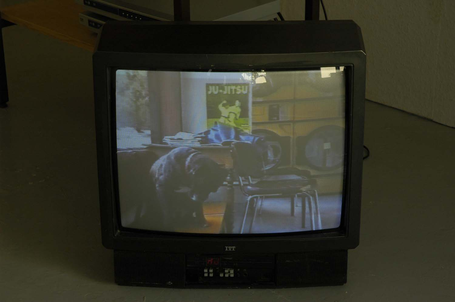 Video image from exhibition