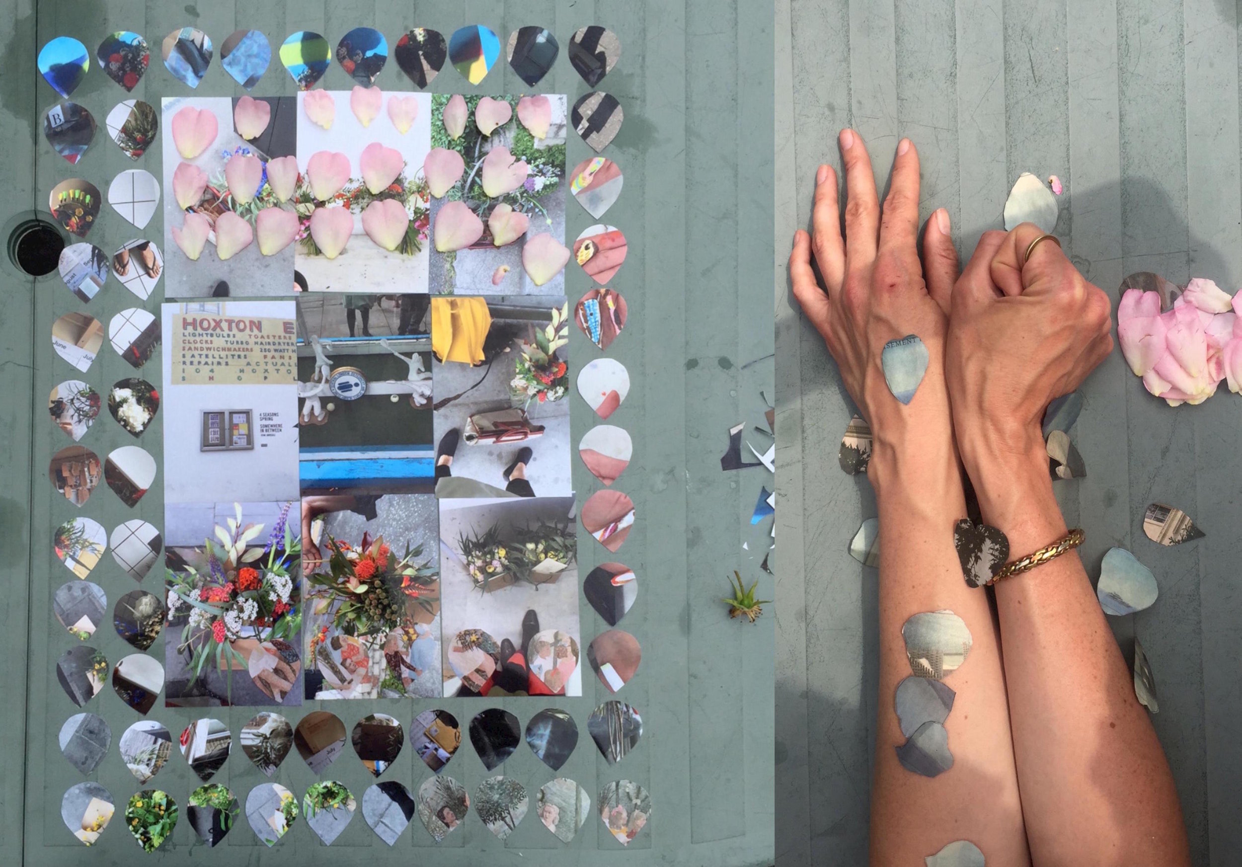 Peer Gallery_ Floral Heraldry_ Alice McCabe.jpeg