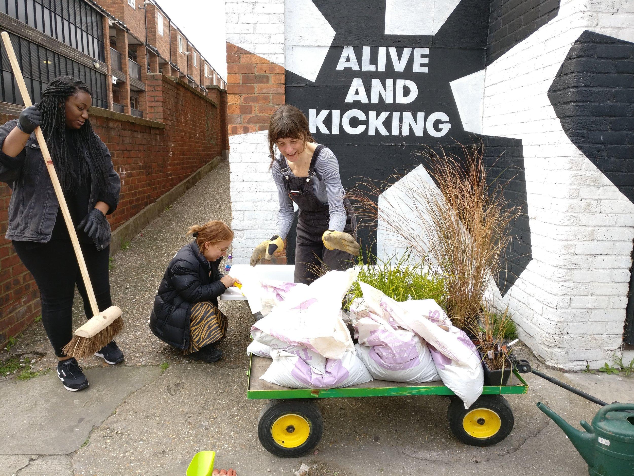 Planting at Alive and Kicking