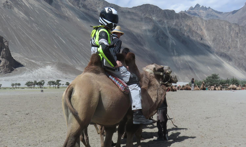 Go Pokemonmies laskeutunut kamelin selkään? :]