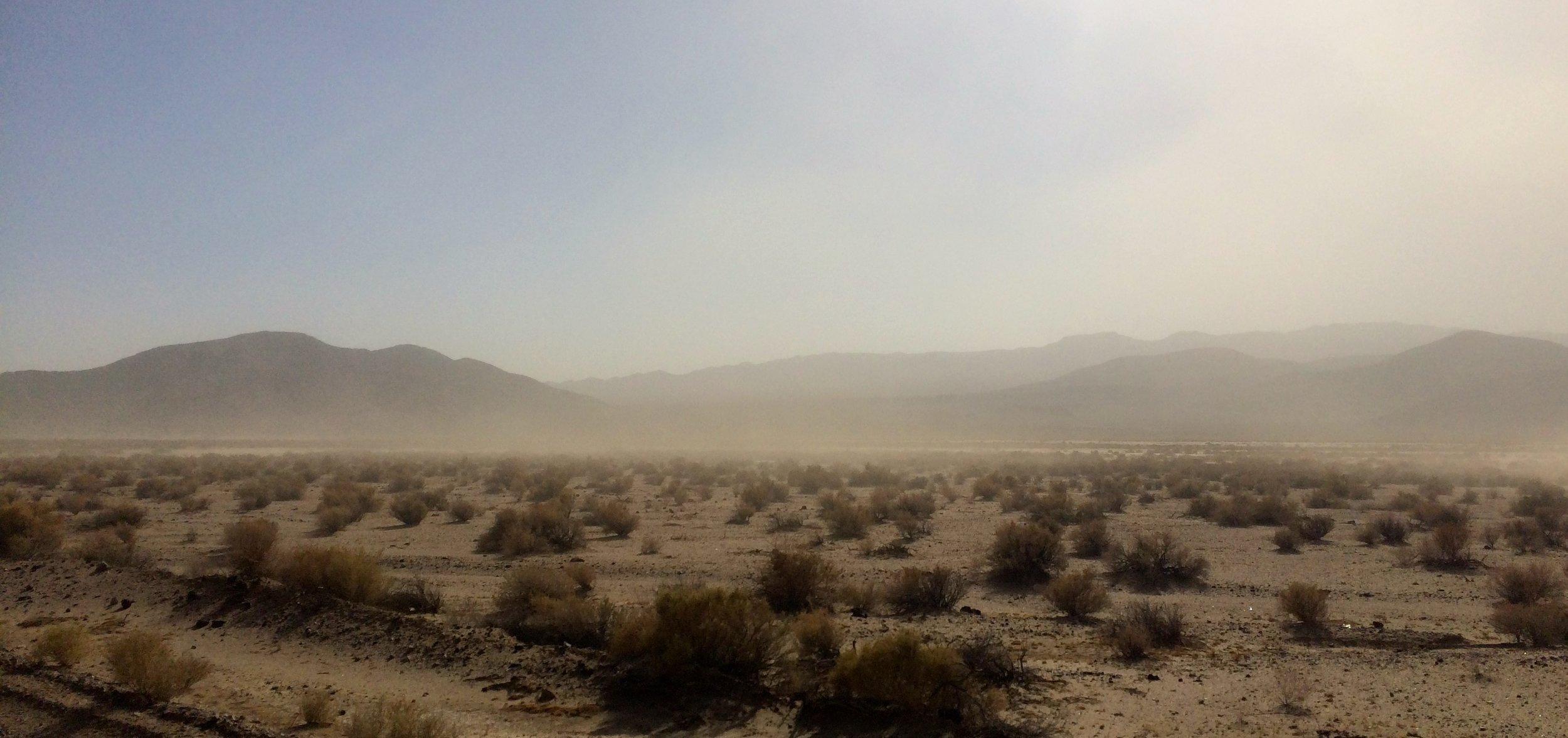 Mojaven aavikolla tuulee.