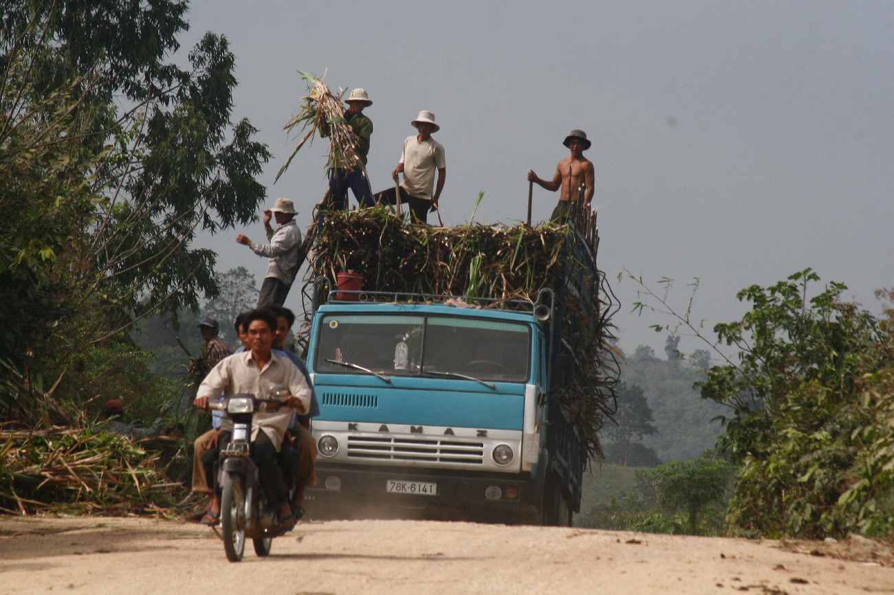 Vietnam_16022008_3813.JPG