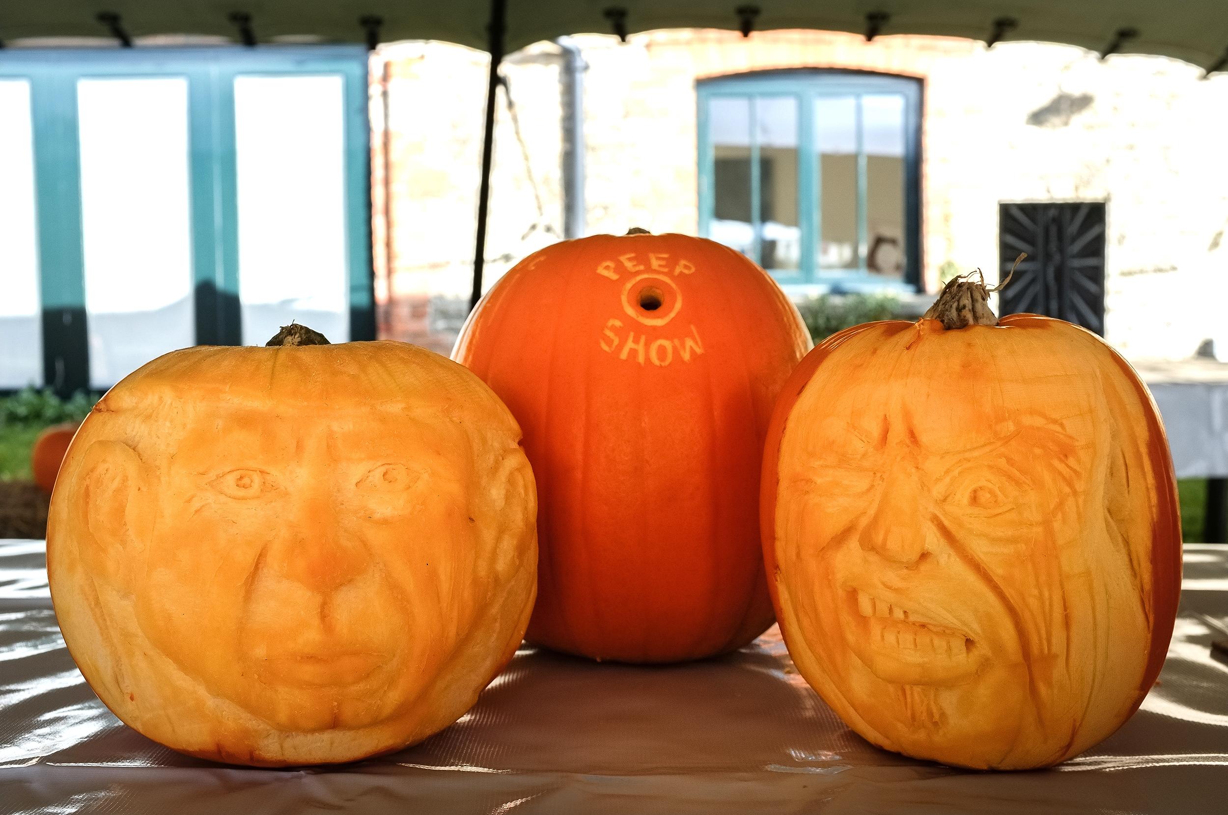H&W Pumpkin Fest 2015-17.jpg