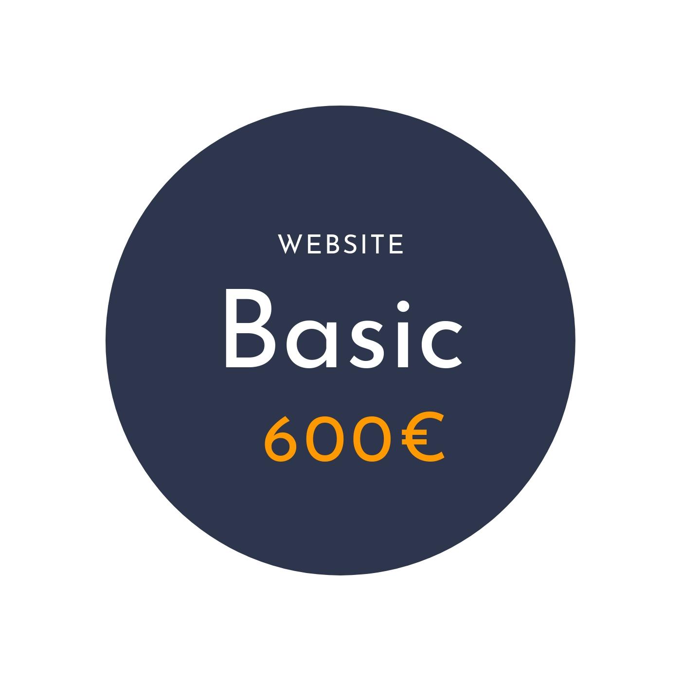 websitebasic.jpg