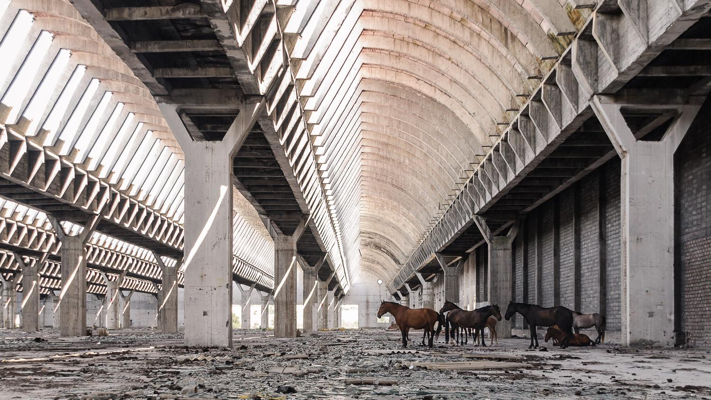 pedrogsaez-landscapesfound-reset-project-architecture-intelhorce-1.jpg