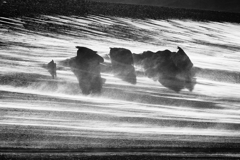 pedrogsaez-ephemeral-whites-landscape-web-photography-4.jpg