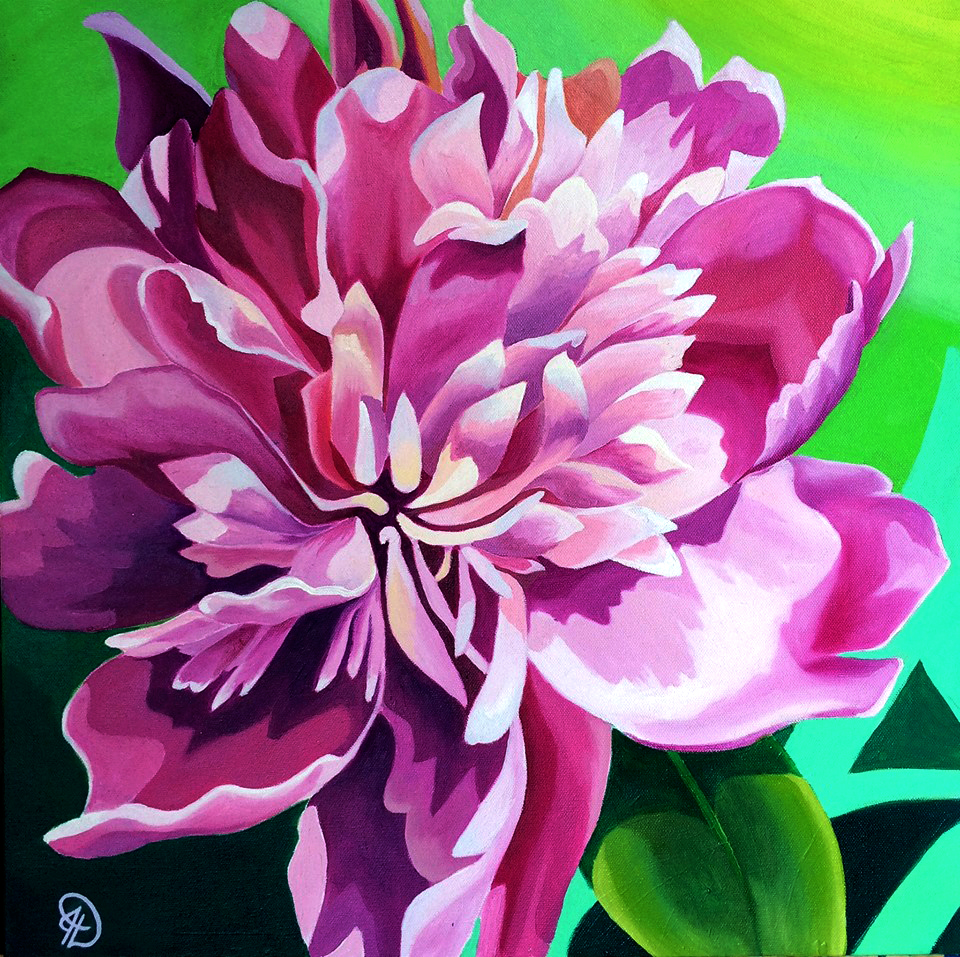 """The McDonald Peony"" 24x24 oil on canvas - Two of my best friends got married in a peony garden.  Its was breathtaking and this is a portrait of one of the blooms growing on the day they got married."