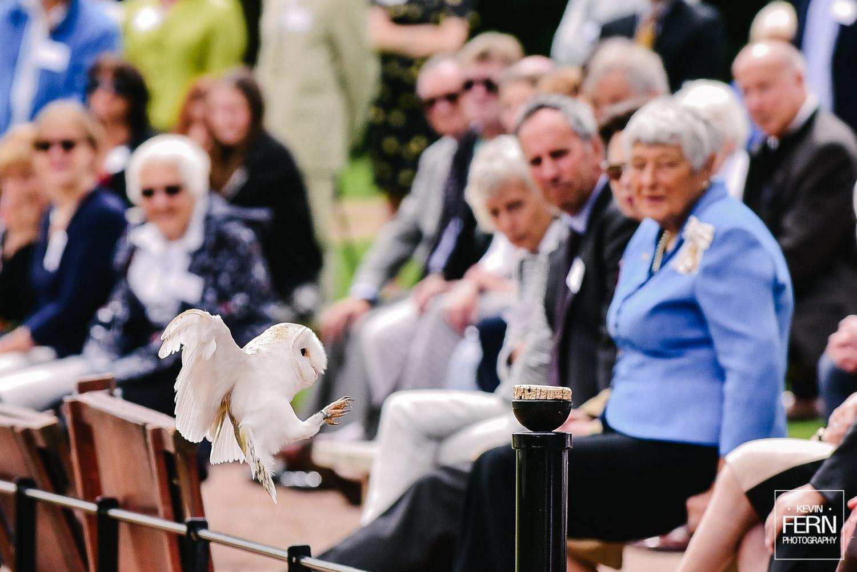 hrh-princess-anne-bird-of-prey-newent-event-2.jpg