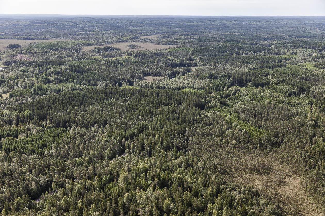 Tassemarker i sydvästra Småland