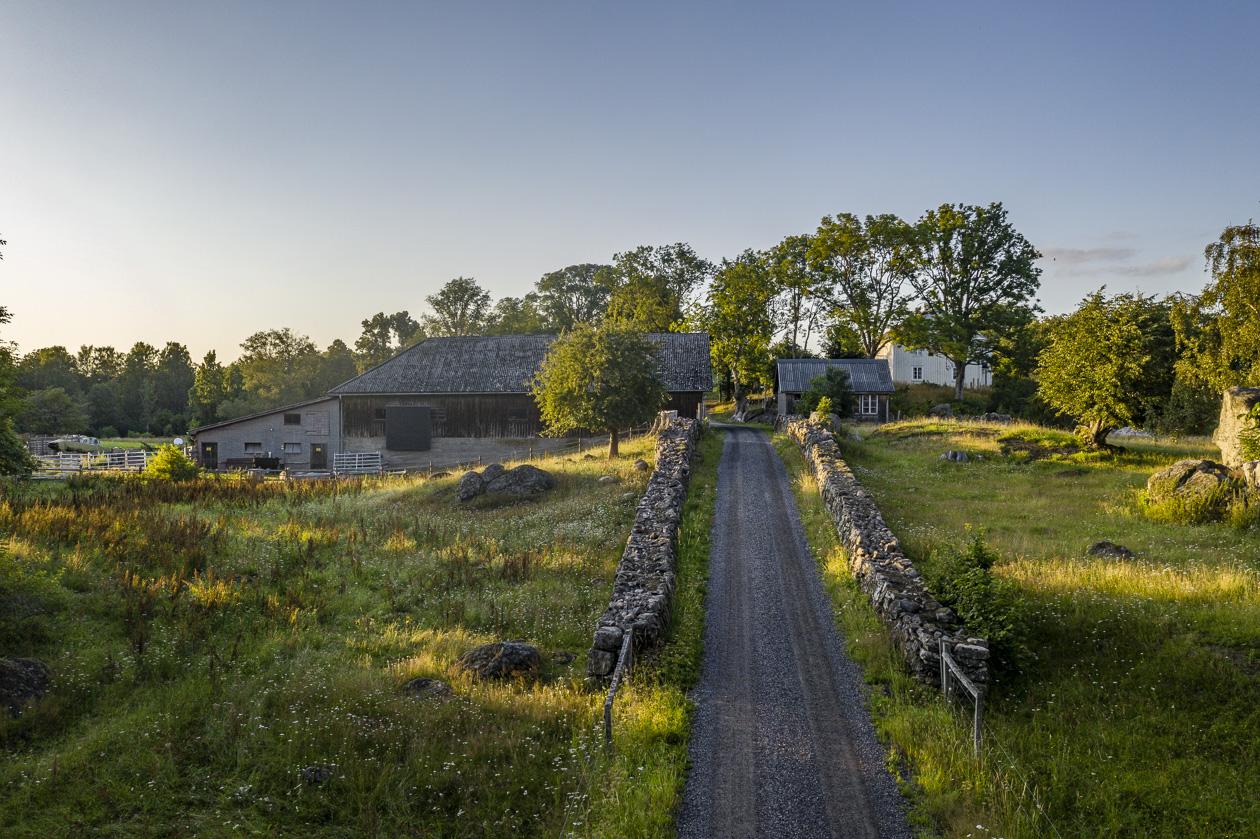 Höö i Småland