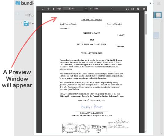 Bundledocs_Preview_Window_Screen.png