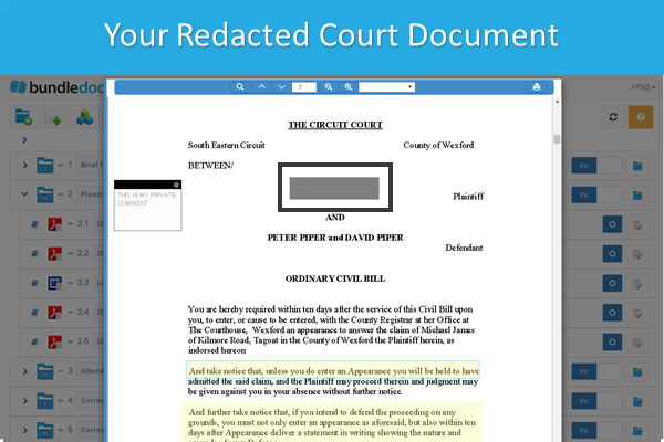 How_To_Redact_Court_Documents_6.png