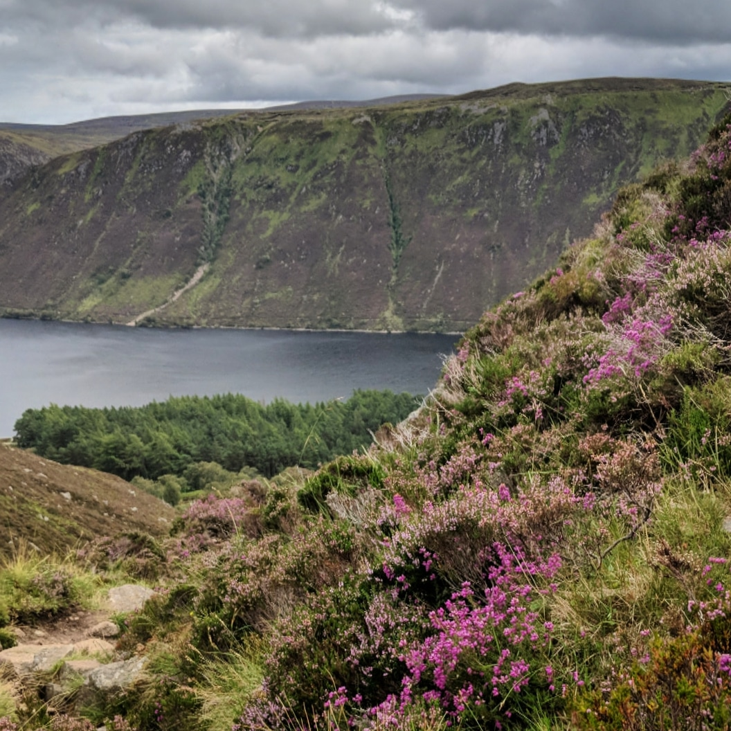 View down to Loch Muick