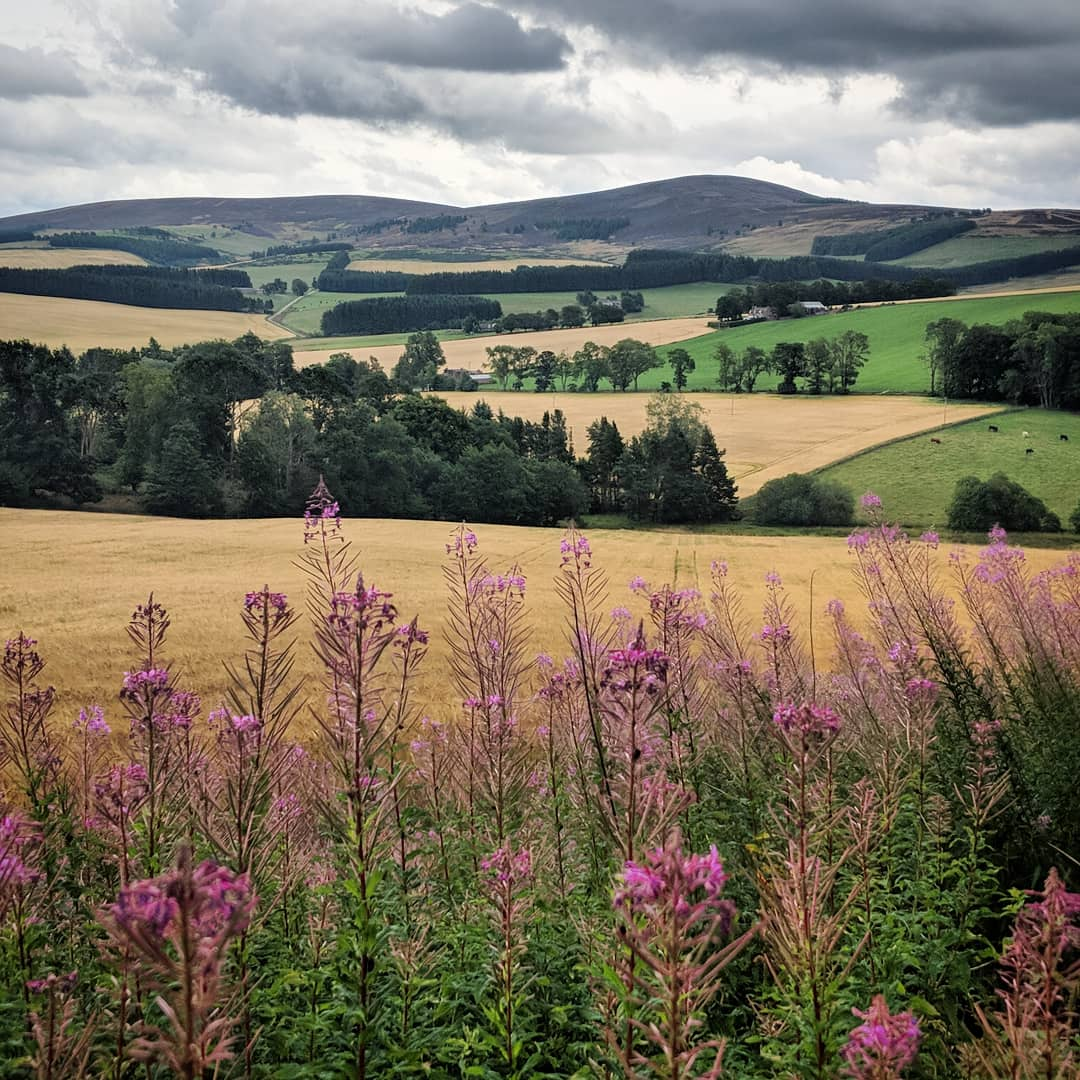 The rolling fields of Aberdeenshire