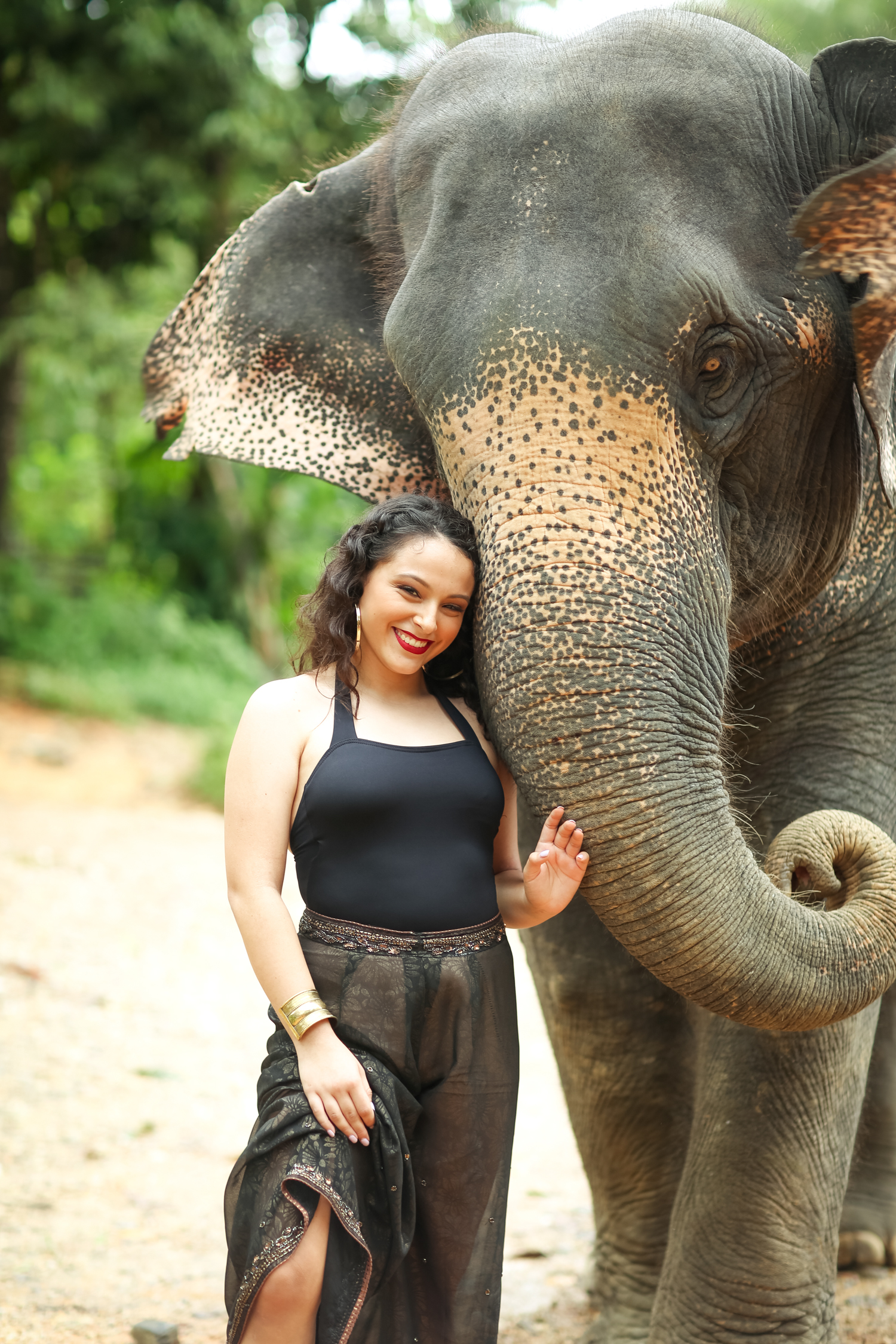 elephant-3.jpg