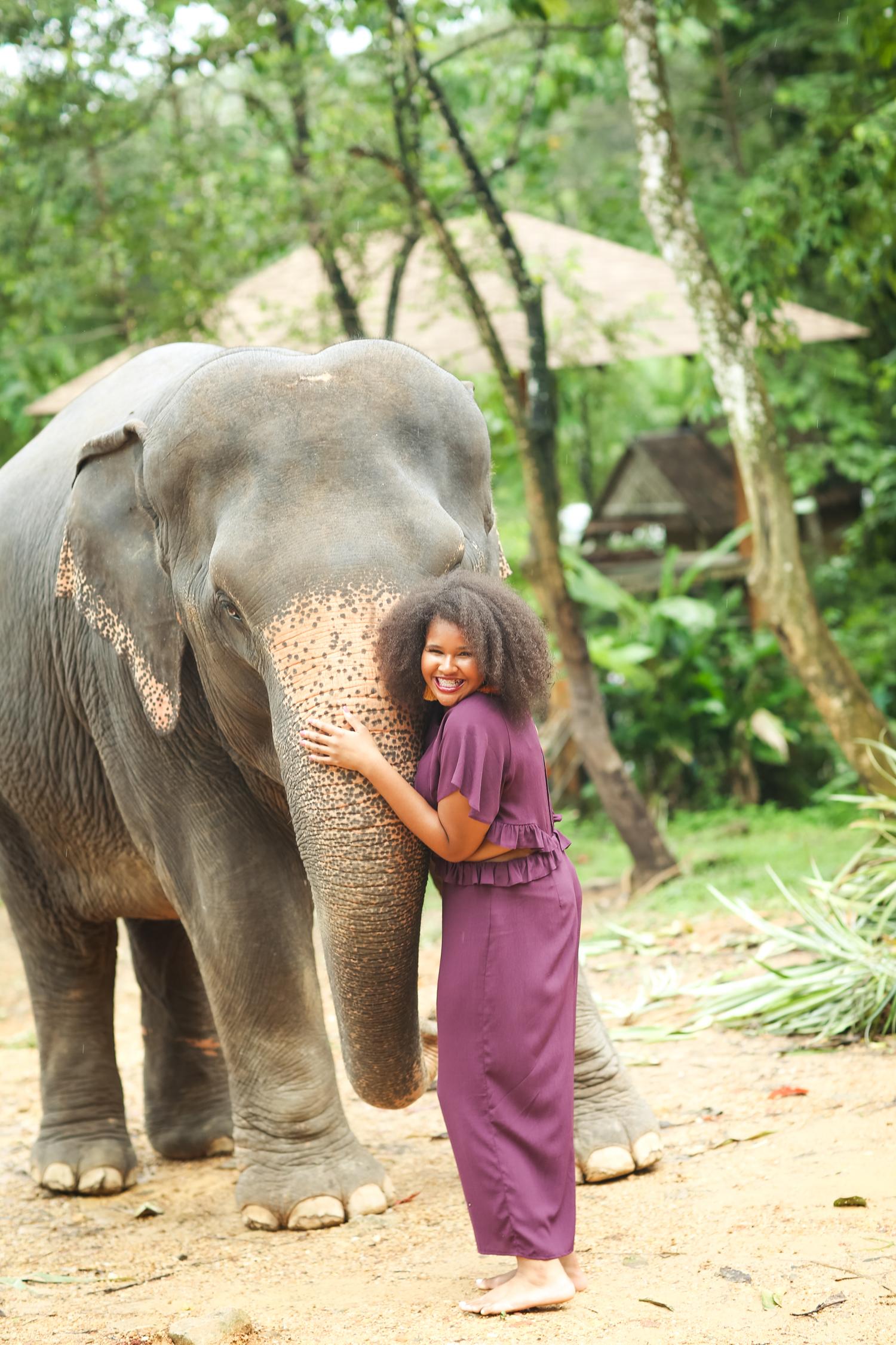elephant-7.jpg