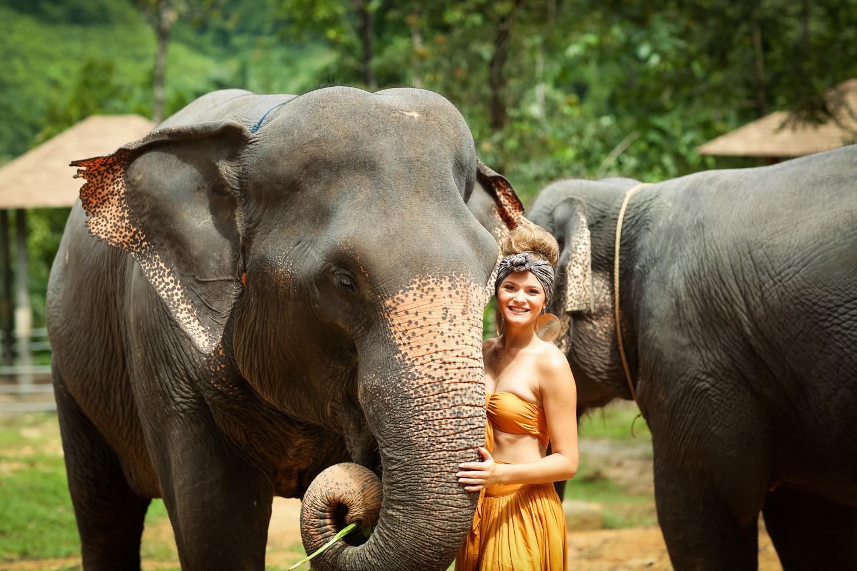 elephant-11.jpg
