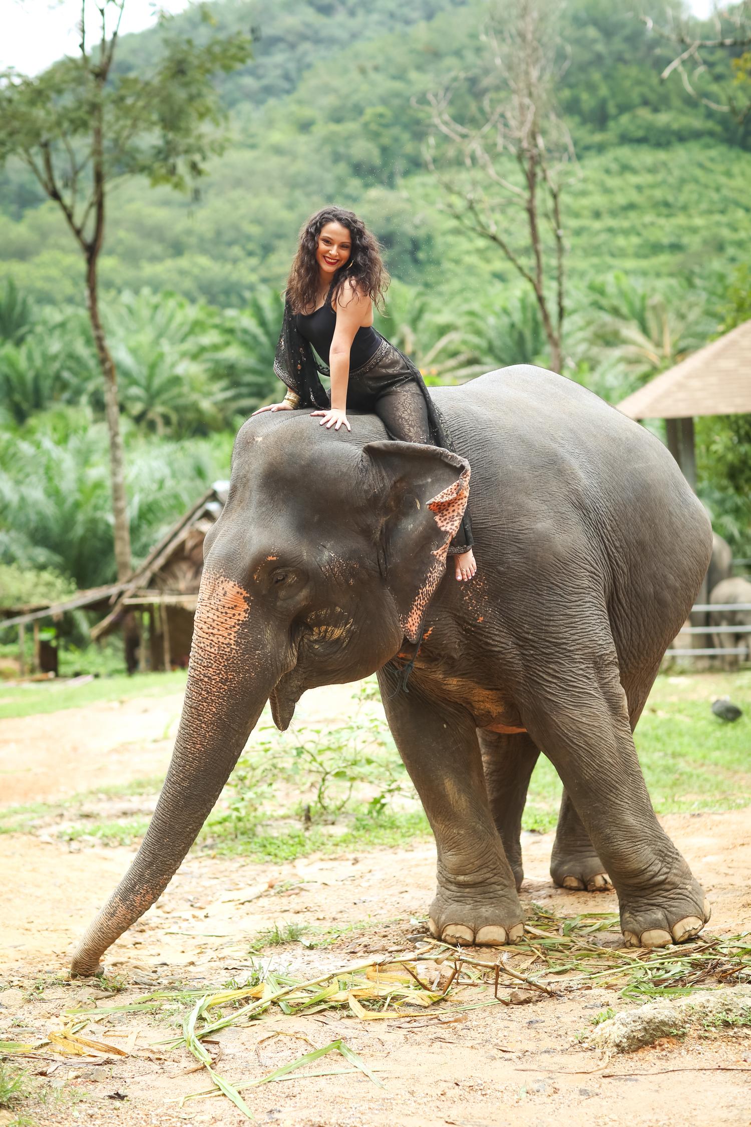 elephant-32.jpg