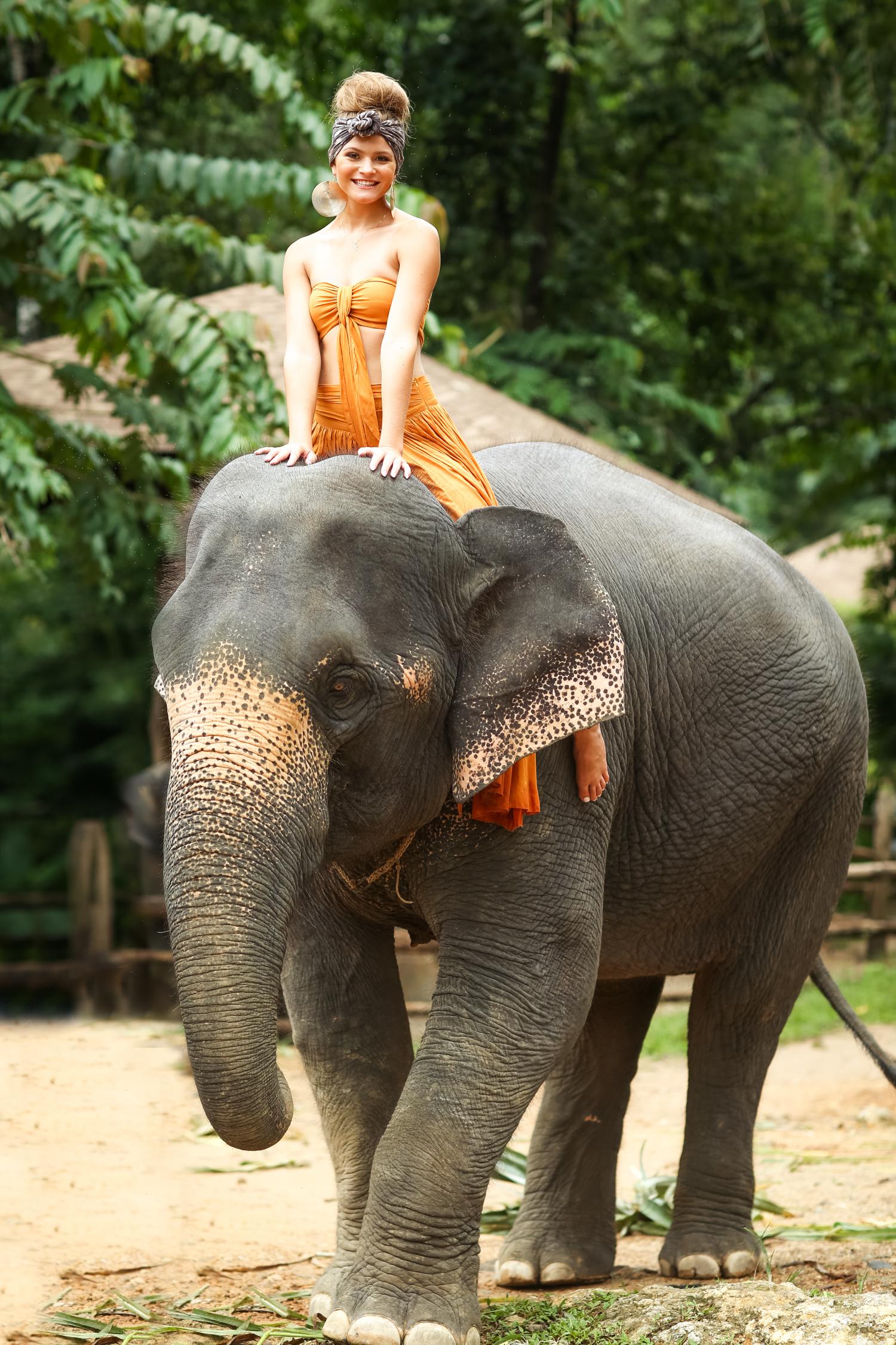 elephant-34.jpg