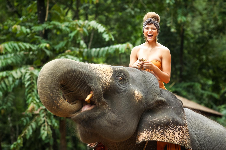 elephant-36.jpg