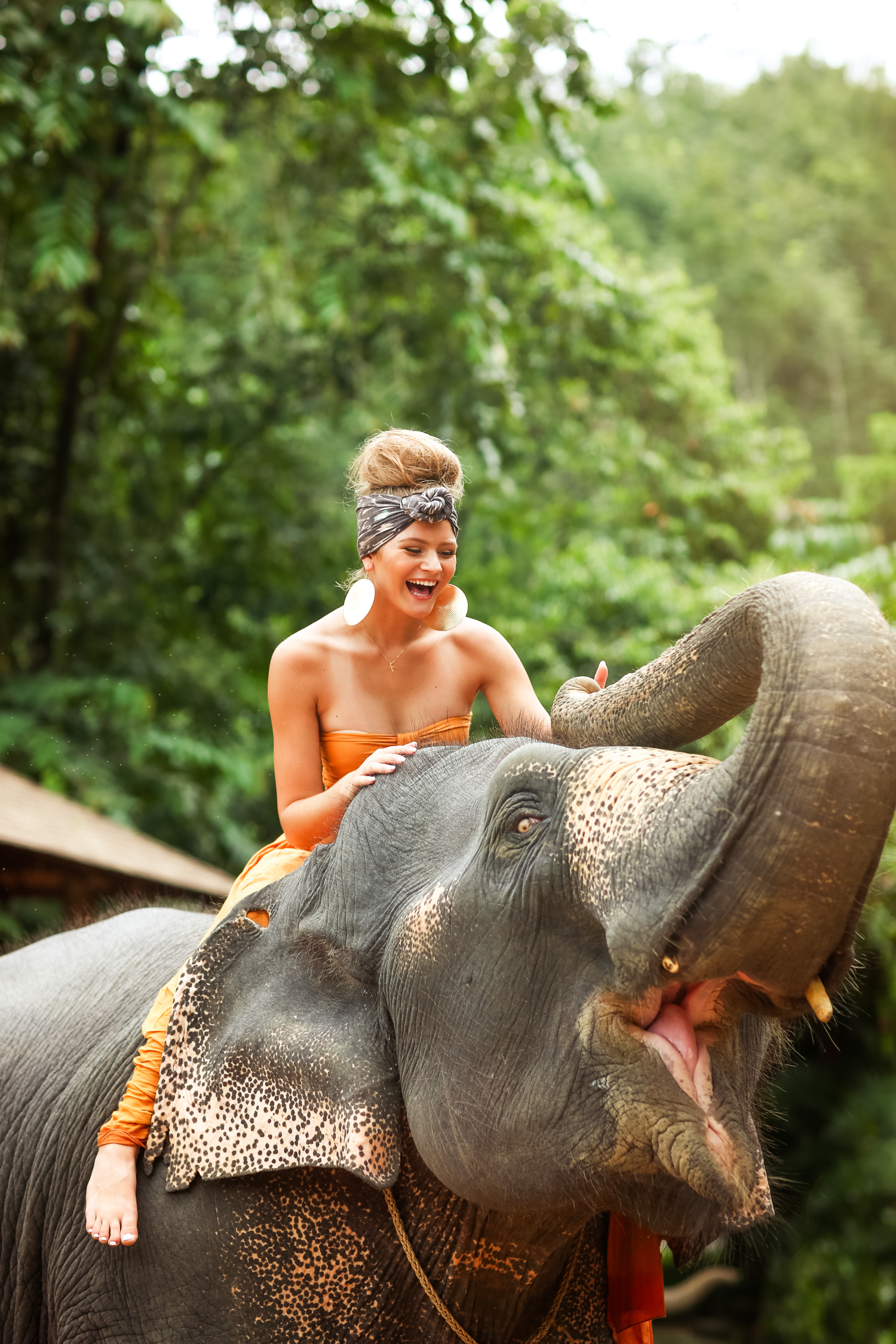 elephant-38.jpg