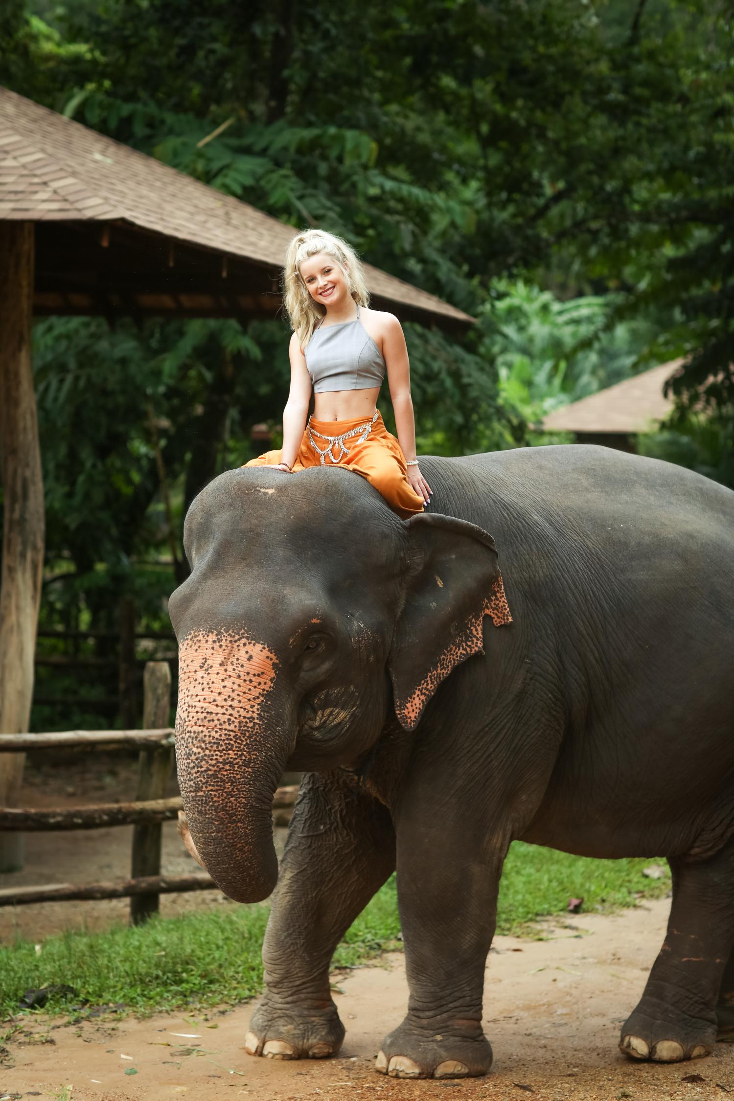 elephant-39.jpg
