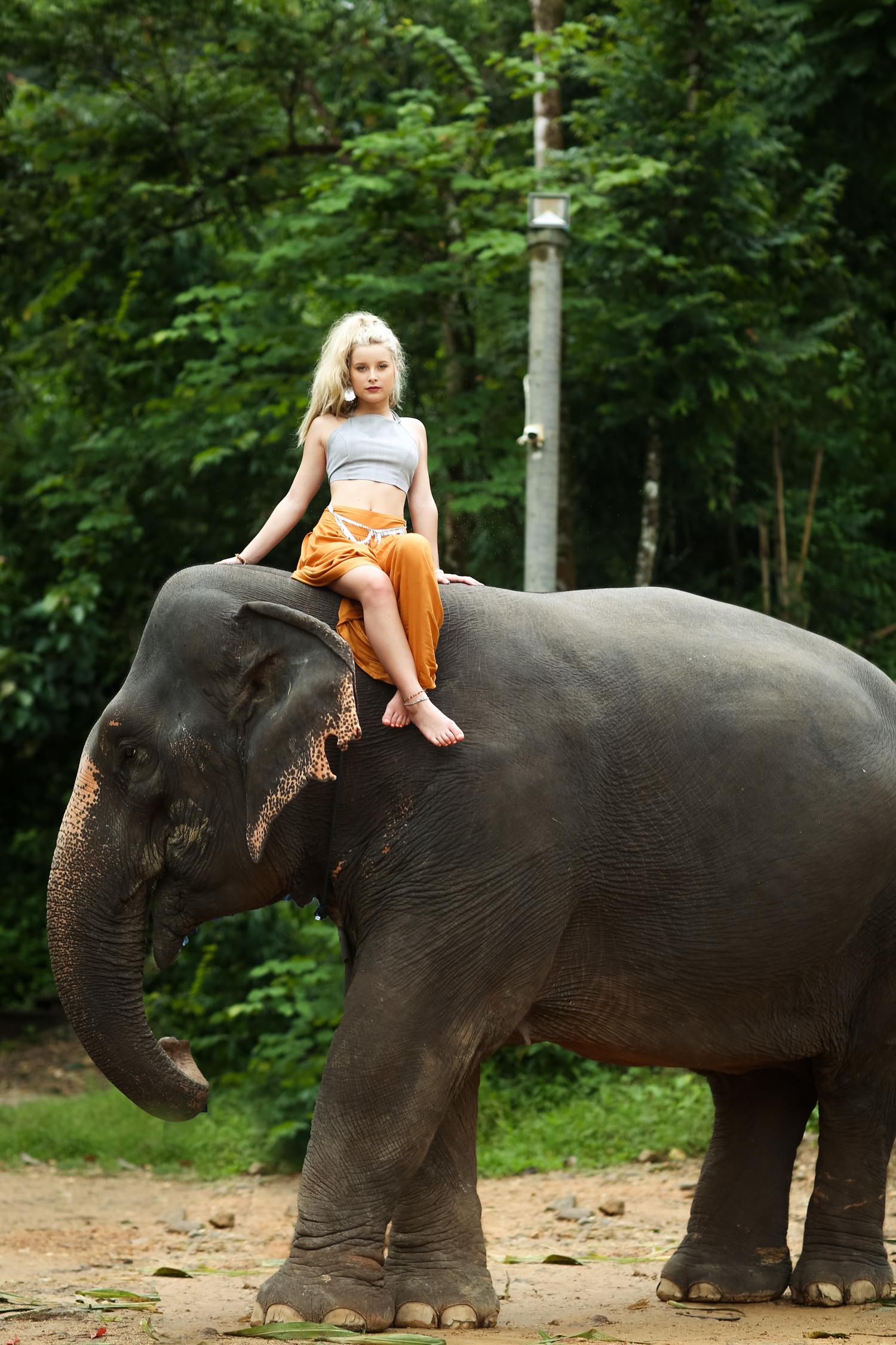 elephant-44.jpg